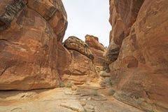 深深在一个红色岩石峡谷内 免版税库存照片