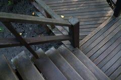 深深木桥和台阶在美洲红树森林里 库存照片