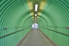 深深绿色隧道恐怖感受 图库摄影