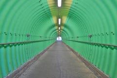 深深绿色隧道恐怖感受 免版税库存照片