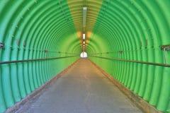 深深绿色隧道恐怖感受 库存图片