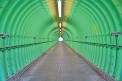 深深绿色隧道恐怖感受 免版税库存图片