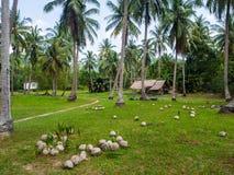 深深议院在棕榈树丛里 免版税库存照片