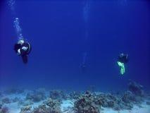 深潜水 库存照片