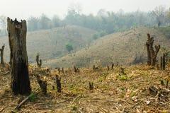 深砍和烧伤耕种 免版税库存照片