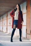 深紫红色外套的,街道样式,春天夏天趋向,黑暗的裙子,米黄毛线衣年轻美丽的时髦的妇女,私秘 库存图片