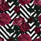 深红玫瑰传染媒介无缝的样式 在黑白V形臂章背景,开花的纹理的黑暗的花 皇族释放例证