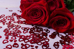 深红玫瑰和心脏标志在淡紫色背景 库存照片