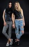 深色两个可爱的被塑造的女朋友-白肤金发和 免版税库存照片