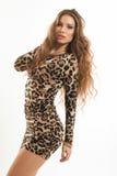 年轻深色的女孩时尚画象豹子礼服的 免版税库存照片