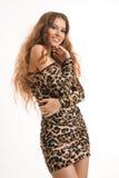 年轻深色的女孩时尚画象豹子礼服的 库存照片