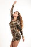 年轻深色的女孩时尚画象豹子礼服的 免版税库存图片