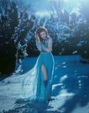 年轻深色的女孩是在蓝色葡萄酒礼服 库存图片