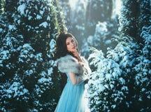 年轻深色的女孩是在蓝色葡萄酒礼服 图库摄影