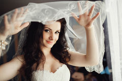 年轻深色的秀丽或新娘,在白色面纱后 库存图片