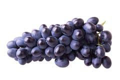 深蓝成熟葡萄 库存照片