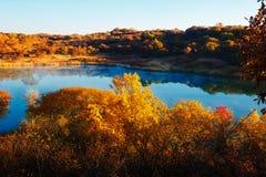 深蓝湖和秋天树 图库摄影