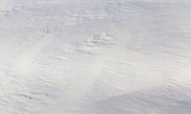 深随风飘飞的雪 库存照片