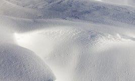深随风飘飞的雪 免版税库存照片