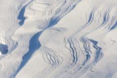 深随风飘飞的雪 库存图片