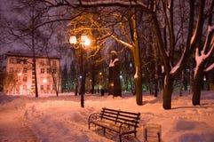 深雪在有长凳、树和街灯的镇公园 冬天与随风飘飞的雪的夜照片 免版税库存照片