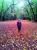 深刻的捷克秋天在有捷克女孩的森林里 免版税图库摄影