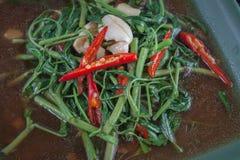 混乱油煎的蔬菜 库存图片