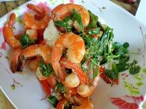 混乱油煎的虾用辣椒和圣洁蓬蒿 库存照片