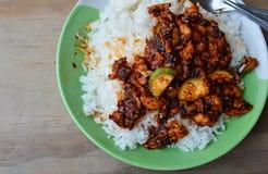 混乱油煎的鸡用在辣辣椒酱的茄子在米 库存照片