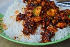 混乱油煎的鸡用在辣辣椒酱的茄子在米 免版税库存图片