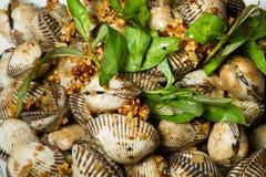 混乱-油煎的牡蛎用大蒜 库存照片