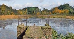 混凝土变老了冷的秋天湖的生苔农村brige 库存照片