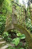 混凝土结构在爱德华詹姆斯庭院的Xilitla墨西哥密林 库存照片