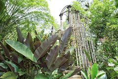 混凝土结构在爱德华詹姆斯庭院的Xilitla墨西哥密林 免版税库存图片