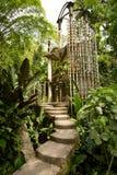 混凝土结构在密林 免版税库存照片