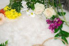 混合五颜六色的花和绿色叶子 免版税库存图片