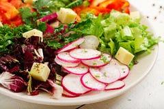 混合从新鲜蔬菜的沙拉并且绿化草本 库存图片