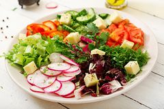 混合从新鲜蔬菜的沙拉并且绿化草本 库存照片