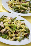 混合沙拉蔬菜 免版税库存图片