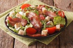 混合油煎的烟肉、蕃茄、油煎方型小面包片和莴苣特写镜头沙拉  库存图片
