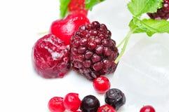 混合的接近的冻结的果子  免版税图库摄影