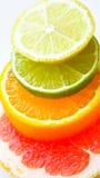 混合的柑桔 库存图片