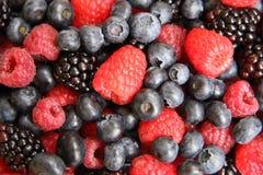 混合的浆果 免版税库存照片
