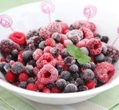 混合的浆果 库存照片