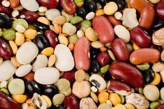 混合的豆 免版税库存图片