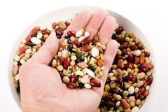 混合的豆 免版税库存照片