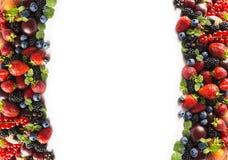 混合莓果和果子在白色 莓果和果子在图象边界与拷贝空间文本的 黑蓝色和红色食物 成熟b 图库摄影