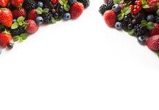 混合莓果和果子在白色 莓果和果子在图象边界与拷贝空间文本的 黑蓝色和红色食物 成熟b 库存图片