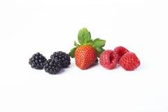 混合莓果 免版税库存照片