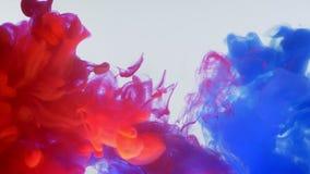 混合蓝色和红色水彩的墨水行动射击的特写镜头底部飞溅和在水中 股票录像